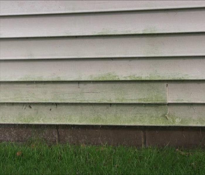Mold Remediation Tips For Mold-Free House Siding